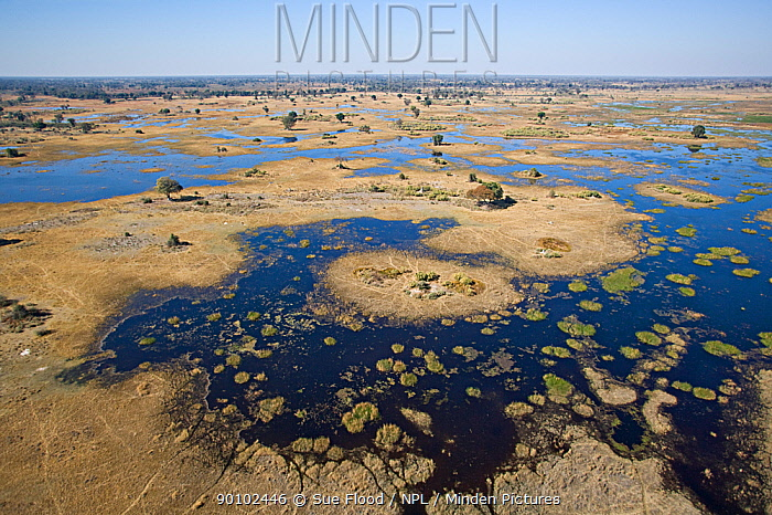 Aerial view of the flooded Okavango delta, Botswana, August 2007  -  Sue Flood/ npl