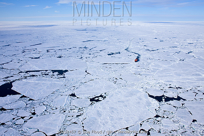 Aerial view of broken ice on route to the North Pole, with ice breaker between ice, Russian Arctic, July 2008  -  Sue Flood/ npl