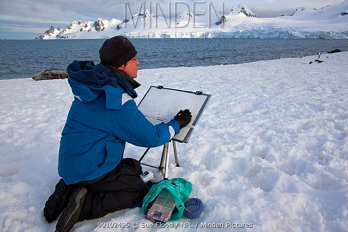 Watercolour artist, David McEown, painting on Half Moon Island, Antarctic peninsula, November 2008  -  Sue Flood/ npl