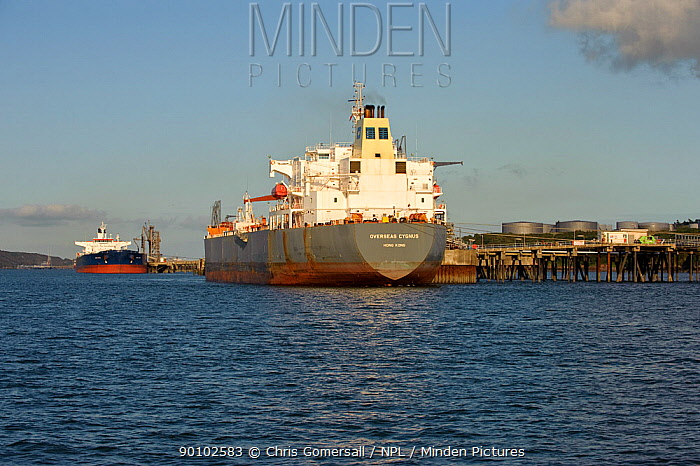 Oil tankers unloading at Milford Haven terminal, Pembrokeshire, Wales, August 2008  -  Chris Gomersall/ npl