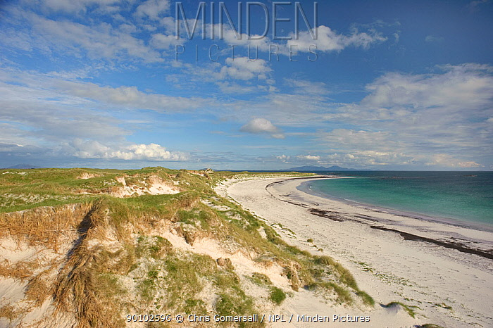 Dunes and coral sand beach, Balranald RSPB reserve, North Uist, Outer Hebrides, Western Isles, Scotland, June 2009  -  Chris Gomersall/ npl