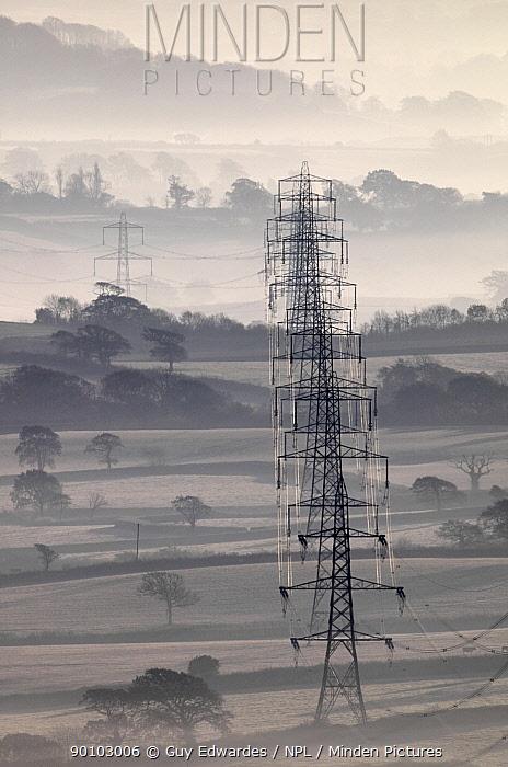 Electricity pylons stretching across the Marshwood Vale in west Dorset, Lambert's Castle, Marshwood, Dorset, England, December  -  Guy Edwardes/ npl