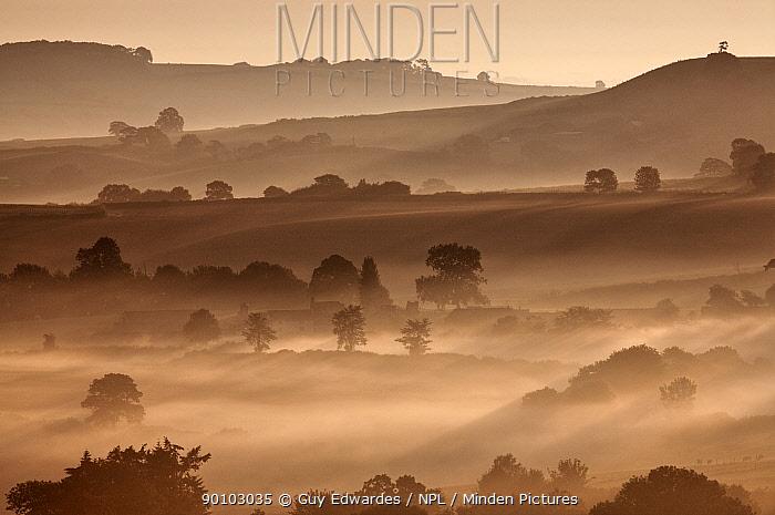 View from Pilsdon Pen at dawn, Broadwindsor, Dorset, England, July 2006  -  Guy Edwardes/ npl