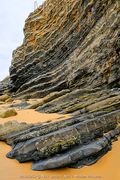 Folded layers of Jurassic sedimentary limestone and marl rocks in the cliffs at Vega beach, Ribadesella, Asturias, Spain July 2009  -  Nick Upton/ npl