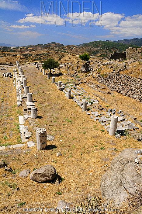 Hellenistic Temple of Athene at the Acropolis of Pergamon (Bergama), Turkey August 2009  -  Nick Upton/ npl