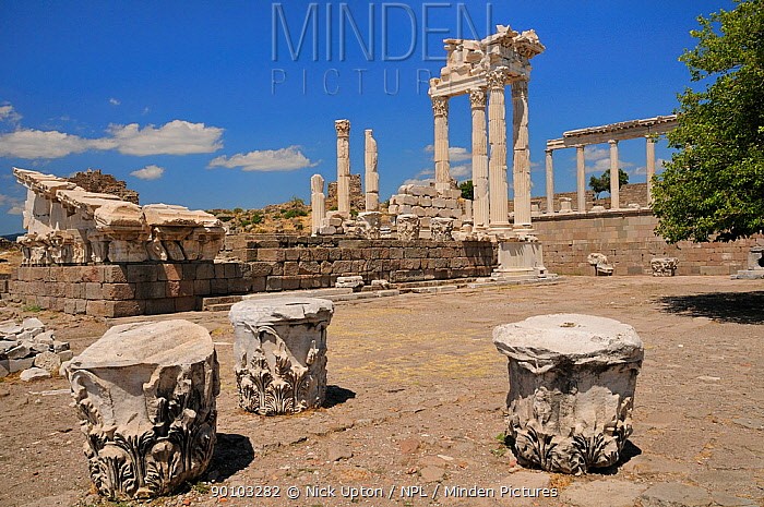 Roman Temple of Trajan at the Acropolis of Pergamon (Bergama), with fallen column capitals in the foreground, Turkey August 2009  -  Nick Upton/ npl
