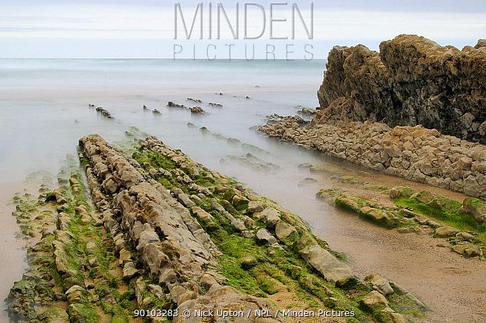 Tide rising over ridges of limestone rock on Vega beach, Ribadesella, Asturias, Spain July 2009  -  Nick Upton/ npl