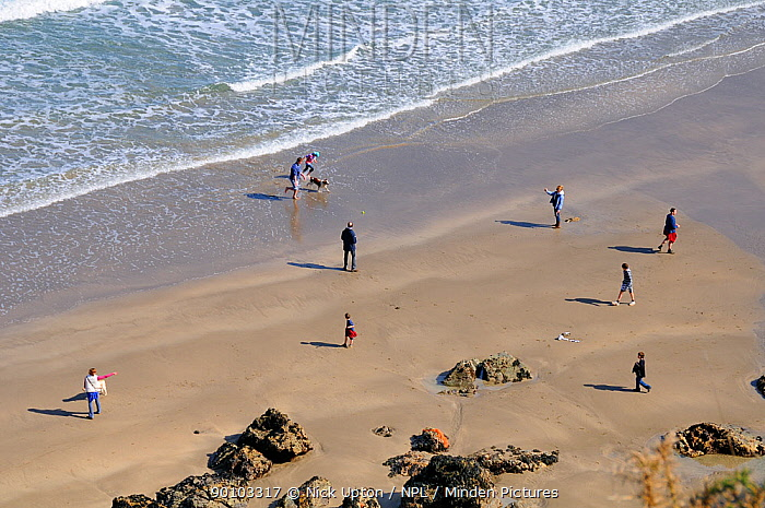 Overview of a family walking on a sandy beach and throwing a ball for a dog (Canis familiaris) Cornwall, UK Model released, April 2009  -  Nick Upton/ npl