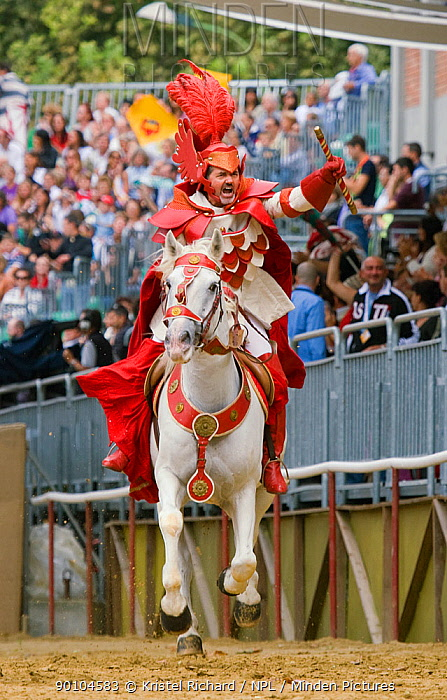 Il Capitano del Gruppo del Commune (the captain of the group of the communes), dressed in white and red, opens the Palio, on the third Sunday of September, in Asti, Piedmont, Italy, September 2009  -  Kristel Richard/ npl