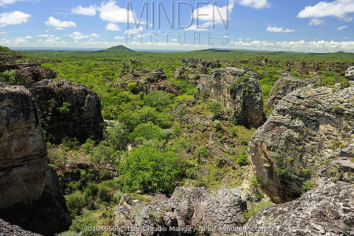 Rock formation created by erosion in Sete Cidades National Park, municipality of Piracuruca, Piaua� State, Northeastern Brazil March 2009  -  Luiz Claudio Marigo/ npl