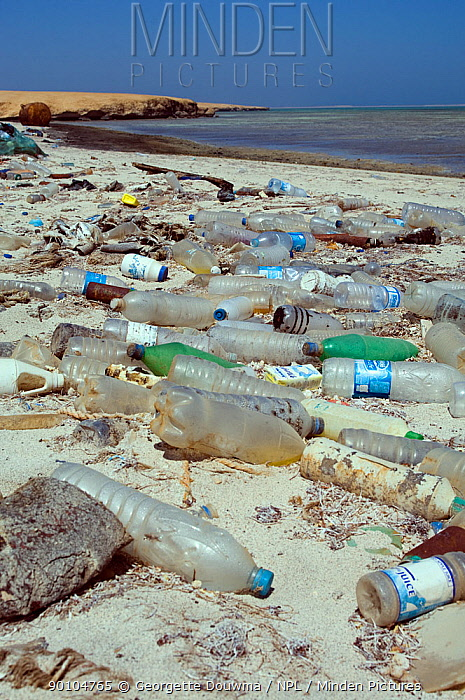 Plastic bottles and other debris washed up on beach Gubal Island, Egypt, Red Sea  -  Georgette Douwma/ npl