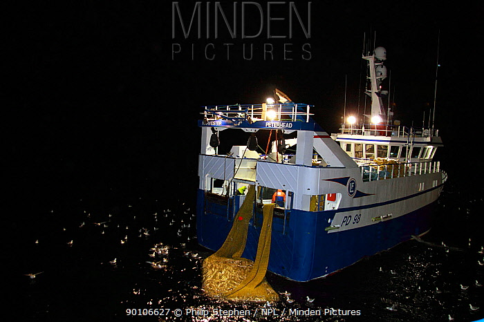 Fishing vessel Harvester taking a good haul of Saithe (Pollachius virens) aboard, at night on the North Sea, 60 miles North East of the Shetlands February 2010, Property released  -  Philip Stephen/ npl