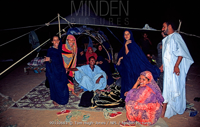 Group of Mauritanian nomads gathering in their tents in the evening, SW Mauritania, February 2004  -  Tom Hugh-jones/ npl
