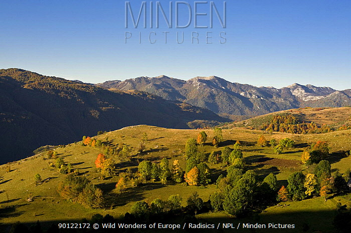 Komarnica Canyon landscape, Durmitor NP, Montenegro, October 2008  -  WWE/ Radisics/ npl