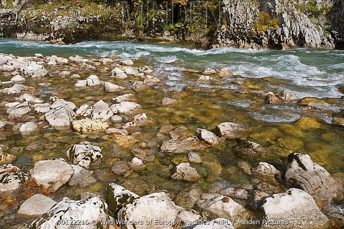 River Tara, Durmitor NP, Montenegro, October 2008  -  WWE/ Radisics/ npl