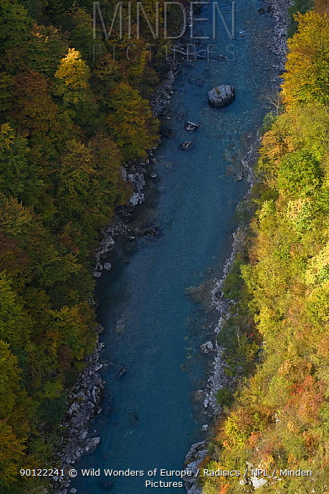 Tara River viewed from Djurdjevica Bridge, Tara Canyon, Durmitor NP, Montenegro, October 2008  -  WWE/ Radisics/ npl