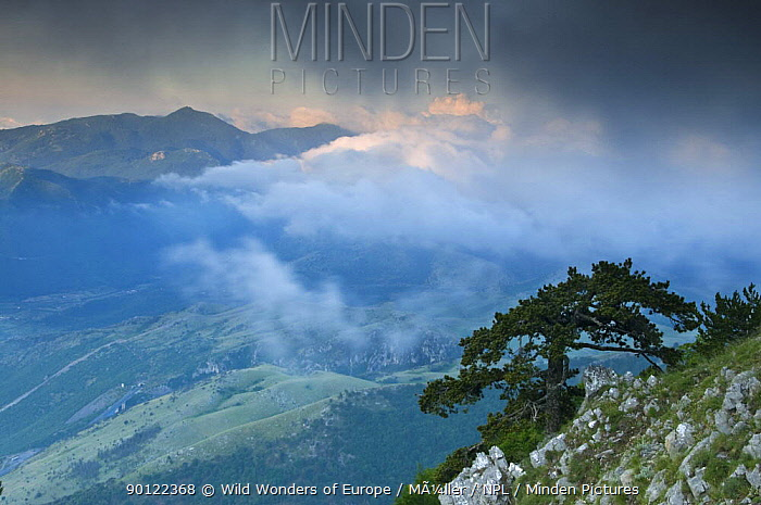 Low clouds over the Pollino National Park, Basilicata, Italy, June 2009  -  WWE/ Muller/ npl