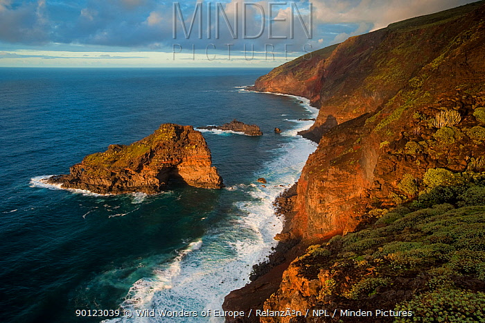 Punta Gorda coast protected area, Northwest La Palma, Canary Islands, Spain, March 2009  -  WWE/ Relanzon/ npl