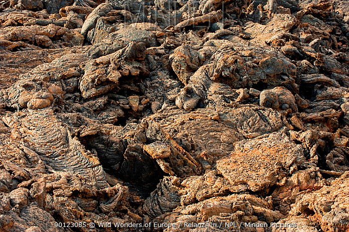 Close-up of solidified lava, Timanfaya National Park, Lanzarote, Canary Islands, March 2009  -  WWE/ Relanzon/ npl