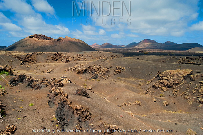 Volcanoes Natural Park, Lanzarote, Canary Islands, Spain, March 2009  -  WWE/ Relanzon/ npl