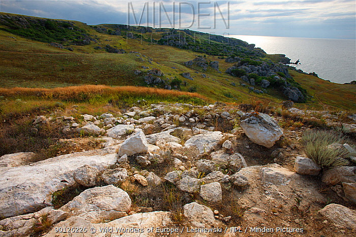 Steppe landscapes of Bagerova at Azov Seashore, Bagerova Steppe, Kerch Peninsula, Crimea, Ukraine, July 2009  -  WWE/ Lesniewski/ npl