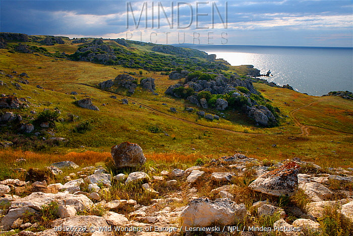 Bagerova Steppe coastal landscape, Kerch Peninsula, Crimea, Ukraine, July 2009  -  WWE/ Lesniewski/ npl
