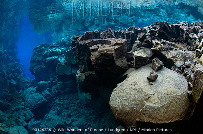 Underwater landscape showing the tectonic boundary between the Eurasian and the North American plates, Silfra, Thingvellir lake, Thingvellir National Park, Iceland, May 2009  -  WWE/ Lundgren/ npl