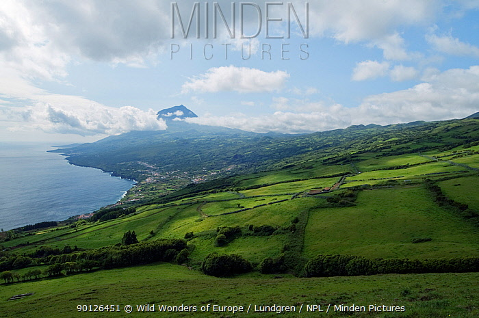 Clouds around Pico, the highest mountain of Portugal, Pico, Azores, Portugal, June 2009  -  WWE/ Lundgren/ npl