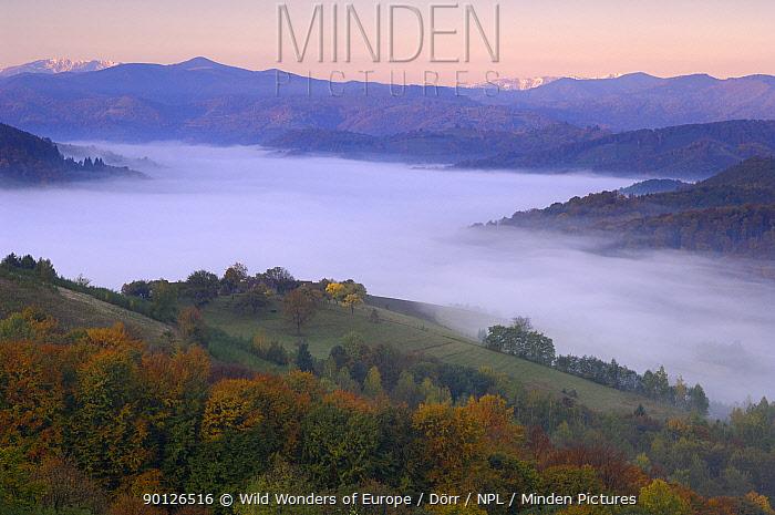 Rural landscape at dawn with low lying mist in valley, near Zarnesti, Transylvania, Southern Carpathian Mountains, Romania, October 2008  -  WWE/ Doerr/ npl