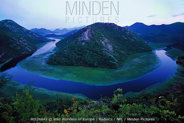River Crnojevica with a central channel between aquatic plants, flowing round Pavlova Strana, at dawn, Lake Skadar National Park, Montenegro, August 2006  -  WWE/ Radisics/ npl