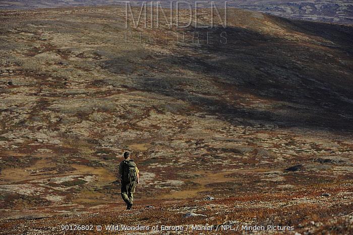 Rear view of person walking in Forollhogna National Park, Norway, September 2008  -  WWE/ Munier/ npl