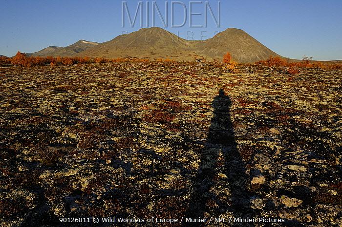 Long shadow of person, Forollhogna National Park, Norway, September 2008  -  WWE/ Munier/ npl