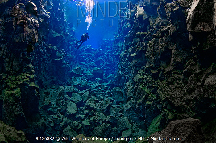 Diver in the tectonic boundary between the Eurasian and the North American plates, Silfra, Thingvellir lake, Thingvellir National Park, Iceland, May 2009  -  WWE/ Lundgren/ npl