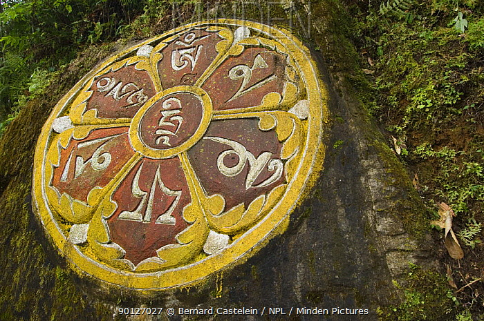 Buddhist Mantra wheel carved in stone, near Kechopari Lake, Sikkim, India October 2007  -  Bernard Castelein/ npl