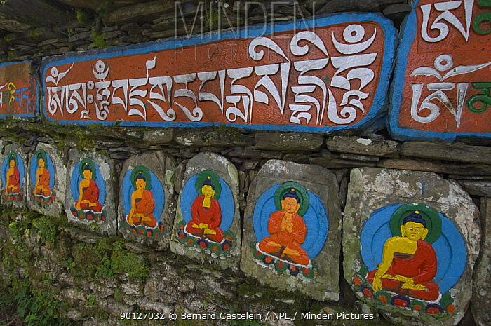 Mani stones in Tashiding Monastery, Sikkim, India October 2007  -  Bernard Castelein/ npl
