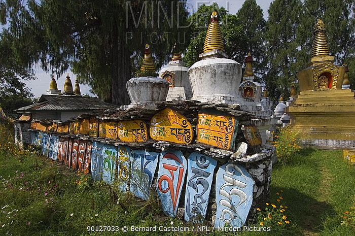 Chortens in Tashiding buddhist Monastery, Sikkim, India October 2007  -  Bernard Castelein/ npl