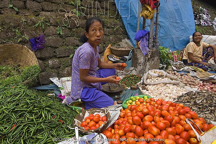 Woman selling vegetables at street market stall,  -  Bernard Castelein/ npl