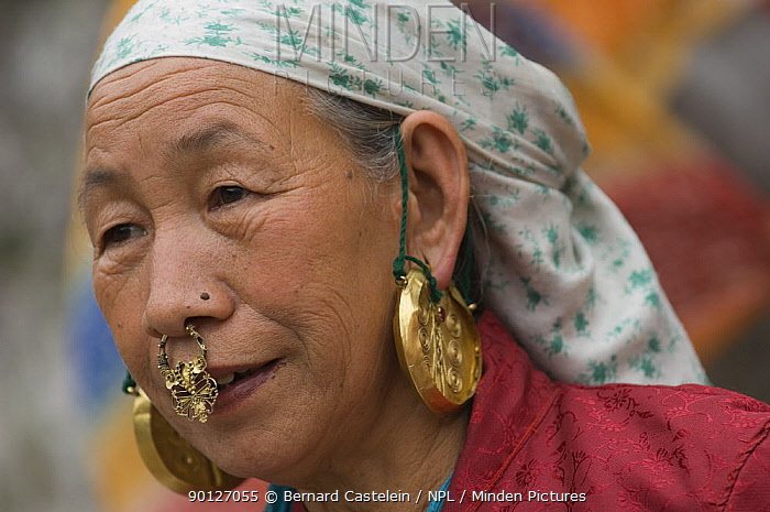 Woman (of Nepali origin) wearing gold jewellery in nose and ears at the street market of Sombare, West Sikkim, India October 2007  -  Bernard Castelein/ npl