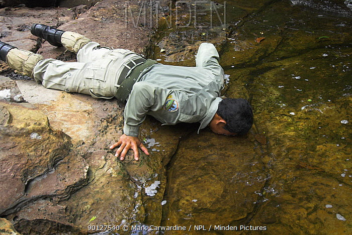 Guard on anti-poaching patrol drinking water from stream, Preah Monivong Bokor National Park, Elephant Mountains, south-western Cambodia (formerly Kampuchea)  -  Mark Carwardine/ npl