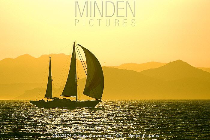 Yacht sailing at sunset, Baja California, Sea of Cortez (Gulf of California), Mexico  -  Mark Carwardine/ npl