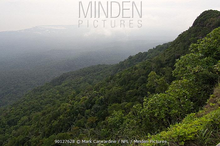 View towards Vietnamese border, Preah Monivong Bokor National Park, south-western Cambodia (formerly Kampuchea)  -  Mark Carwardine/ npl