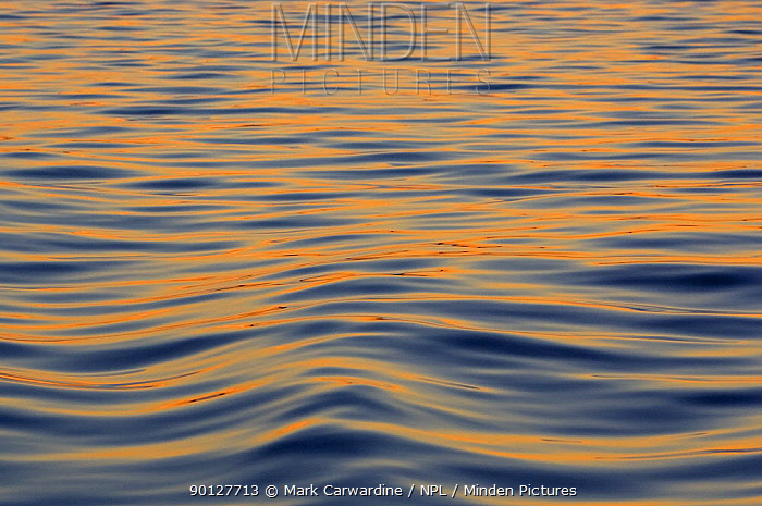 Sun reflected on sea surface at sunset, South East Alaska, USA  -  Mark Carwardine/ npl