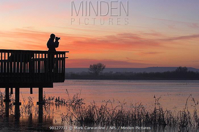 Person bird watching at dawn, Bosque del Apache National Wildlife Refuge, New Mexico, USA  -  Mark Carwardine/ npl