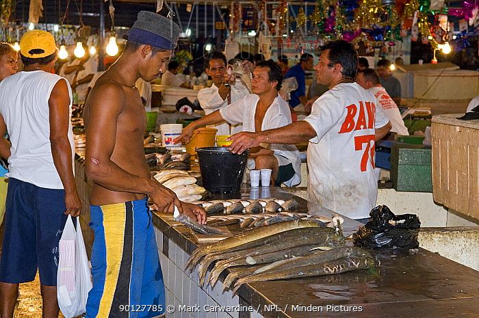 Manaus fish market, Amazonia, Brazil  -  Mark Carwardine/ npl