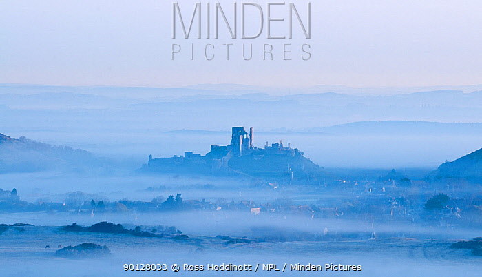 Corfe Castle and village and early morning mist View from Kingston, Dorset, England, UK April 2010  -  Ross Hoddinott/ npl