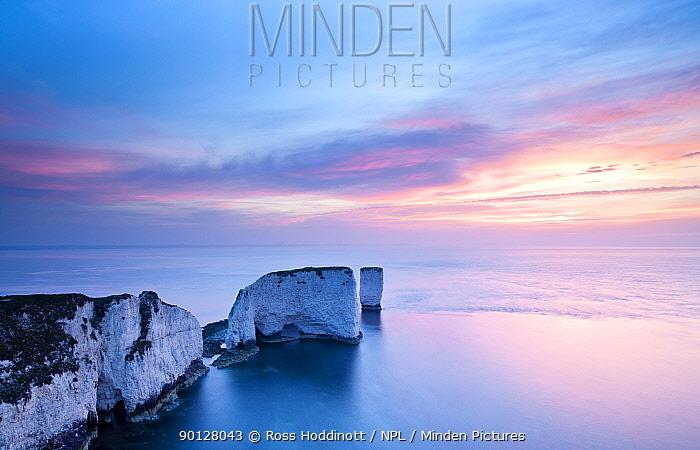 Old Harry Rocks, Studland, colourful sunrise, Dorset, England, UK April 2010  -  Ross Hoddinott/ npl