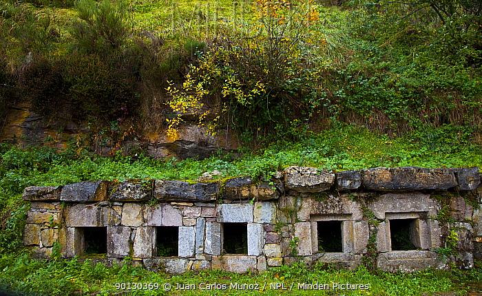 Traditional cave dwellings, Perlunes village, Somiedo NP, Asturias, Northern Spain, November 2009  -  Juan Carlos Munoz/ npl