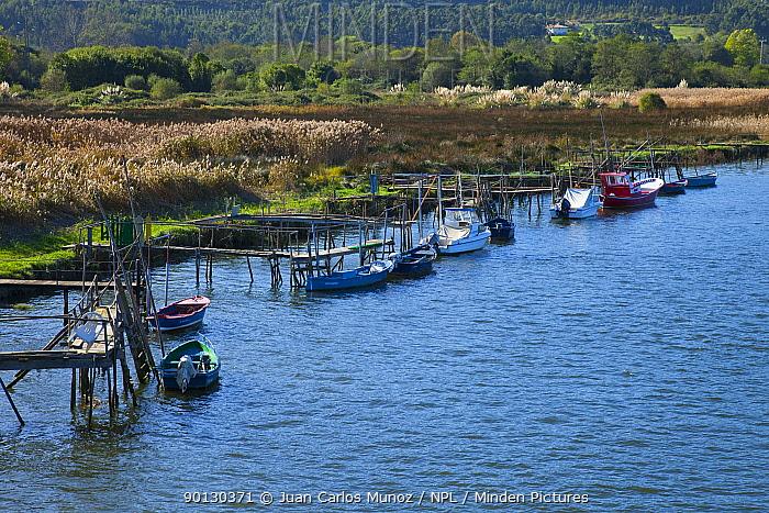 Boats tied to wooden staging on the Nalon river, Muros, Asturias, Northern Spain, November 2009  -  Juan Carlos Munoz/ npl