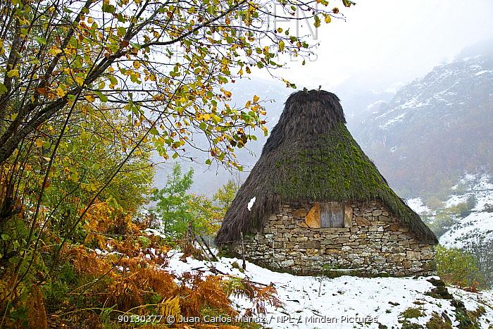 Traditional Branas de teito (stone and thatch hut) in winter landscape, Valle de Saliencia, Somiedo NP, Asturias, Northern Spain, November 2009  -  Juan Carlos Munoz/ npl