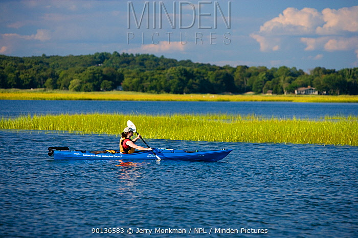 Woman kayaking near the mouth of the Connecticut River, Griswold Point Preserve, Old Lyme, Long Island Sound, Connecticut, USA, August 2006  -  Jerry Monkman/ npl